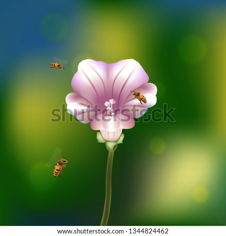 bees fly around flower and take
