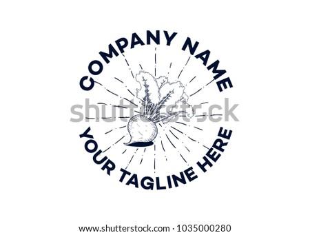 beet fruit vector vintage round badges, emblems, labels or logos