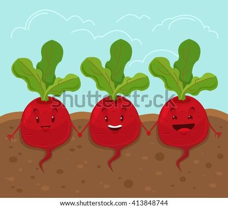 Beet grow underground. Vector cartoon flat illustration