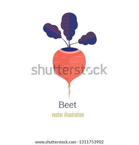 Beet icon. Flat illustration of beet vector icon isolated on white background