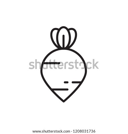 beet icon vector. vegetable icon vector line style