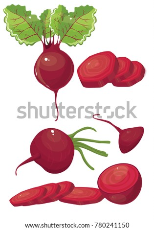 beet vector simple illustration