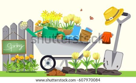 Beginning of basic gardening. Holiday activities.