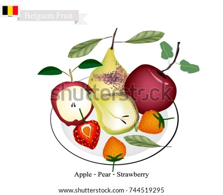 belgian fruit  illustration of