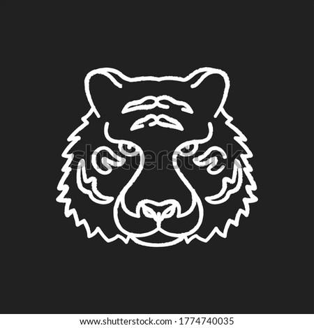 bengal tiger chalk white icon
