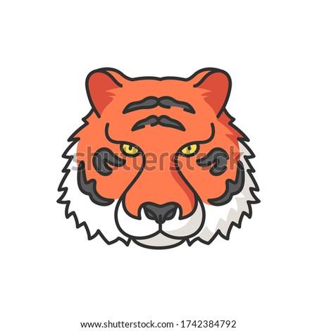 bengal tiger rgb color icon