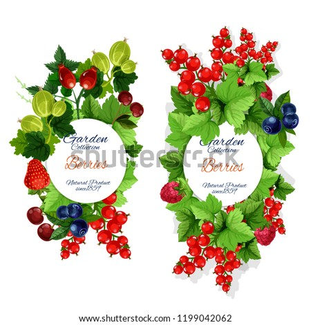 berries and berry fruits