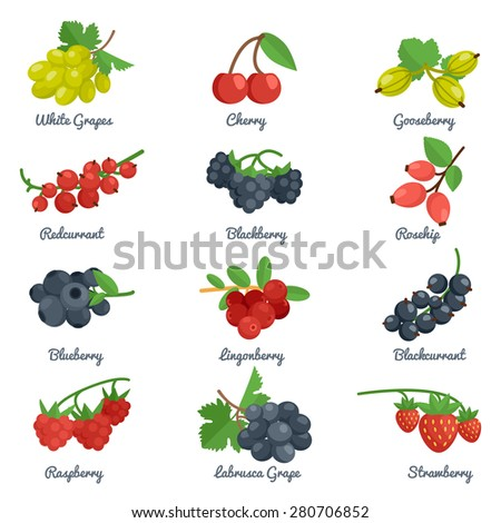 berries flat icons set with