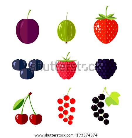 berries flat vector