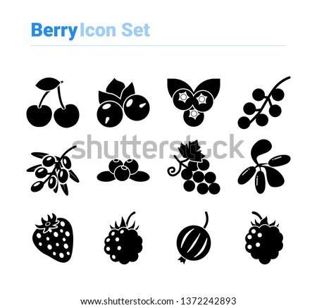 berries icon set icon set of
