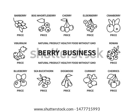 Berry business natural product healthy food linear icons without GMO price design elements quality delicious fresh useful vegetables fruits vegan money commerce logistics search vector symbol set