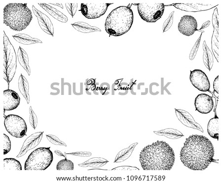 Berry Fruit, Illustration Frame of Hand Drawn Sketch of Fresh Bayberry or Myrica Rubra and Cleistocalyx Operculatus Fruits Isolated on White Background.