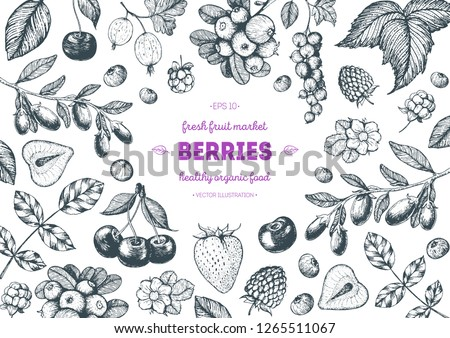 Berry hand drawn, vector illustration frame. Hand drawn sketch illustration with goji berries, cranberry, cloudberry, cherry, raspberry, currant, strawberry. Food design template with berry #1265511067