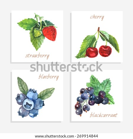berry paper cards with
