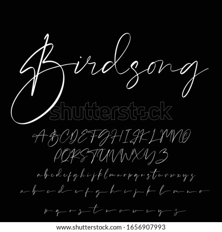 Best Alphabet Birdsong Amazing Script Signature Logotype Font lettering handwritten Stock photo ©