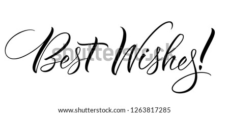 Best Wishes lettering. Handwritten modern calligraphy, brush painted letters. Vector illustration. Template for T-shirt, decor, greeting card, poster or photo overlay