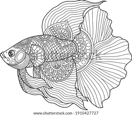 Betta fish coloring page design clear background, mandalas design, and print design stock photo