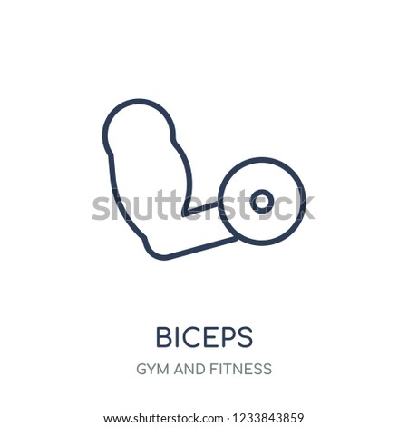 Biceps icon. Biceps linear symbol design from Gym and Fitness collection. Simple outline element vector illustration on white background