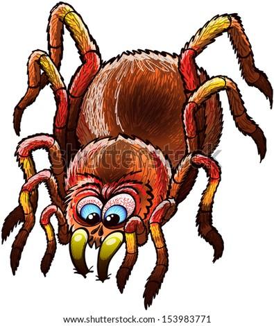 big and determined tarantula