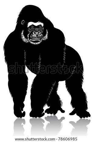Big black gorilla stands on its hind legs.
