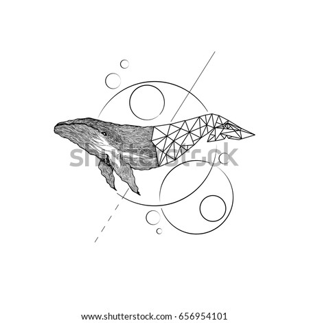 big blue whale   vector hand