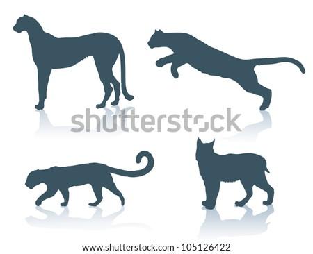 Big cats - vector illustration - stock vector