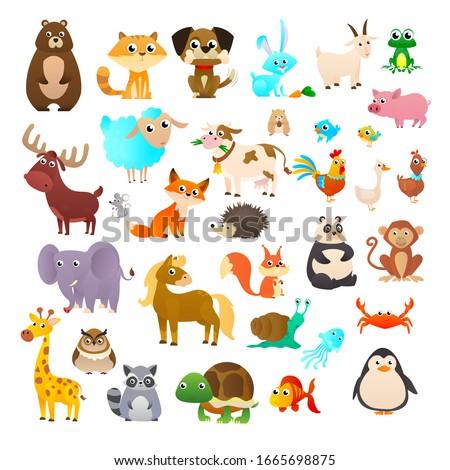Big collection cartoon animals: Sea animals, wild animals, woodland animals.
