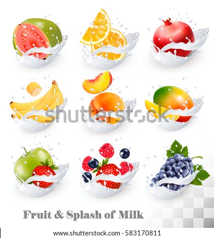 big collection icons of fruit