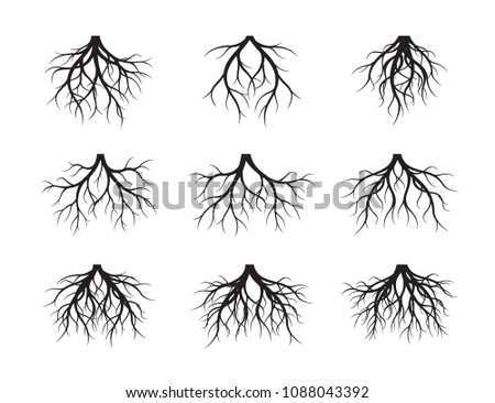 Big collection of Black Root Tree. Vector Illustration. Plants and garden.