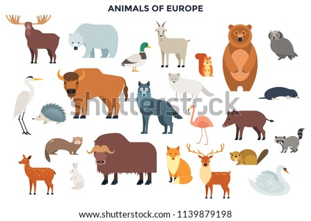 Big collection of cute funny wild European animals and birds. Bundle of adorable cartoon characters isolated on white background. Fauna of Europe. Colorful vector illustration in flat style.