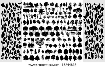 Big collection of different vector trees and leafs - stock vector