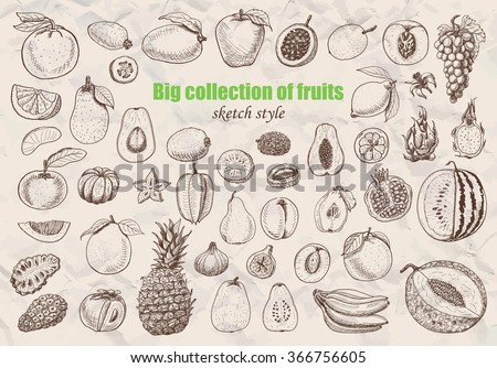 big collection of fruits in