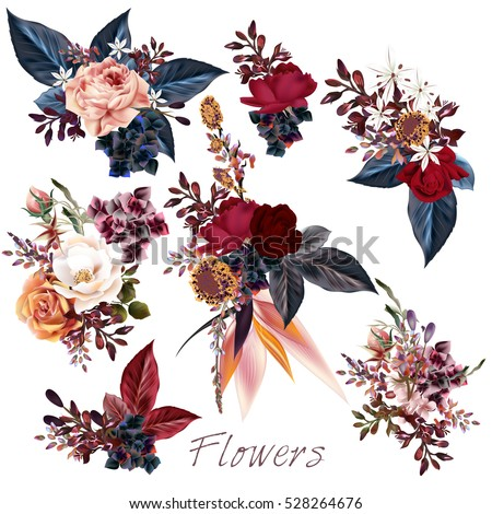 big collection of vector roses