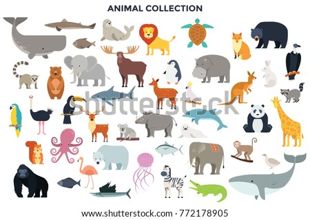 stock-vector-big-collection-of-wild-jungle-savannah-and-forest-animals-birds-marine-mammals-fish-set-of