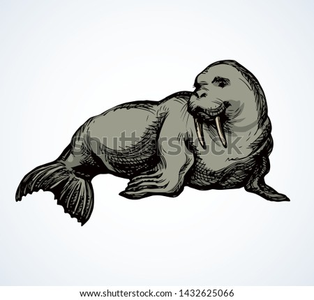 Animal outline for walrus - Download Free Vector Art, Stock