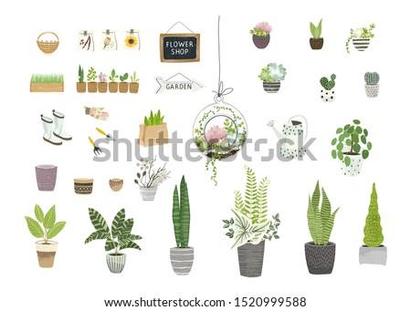 Big garden set for floral design flowers shops, greenhouses, showcases, cultivating home garden. Vector illustration plants, flowers pots, gardening tools, terrarium plant in vintage flat style.