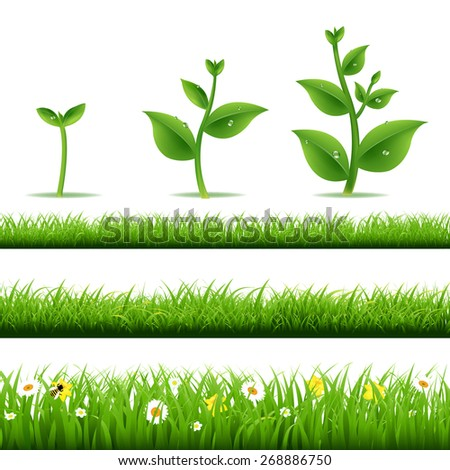 big grass set with plants with