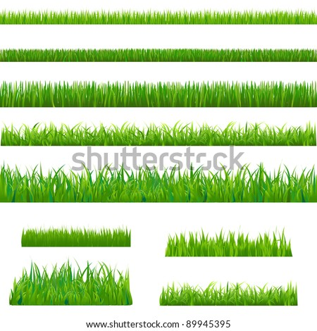 big green grass  isolated on