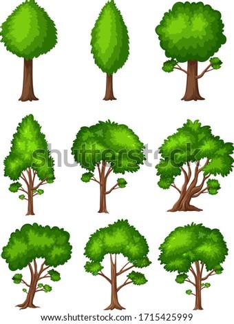 big green trees on white