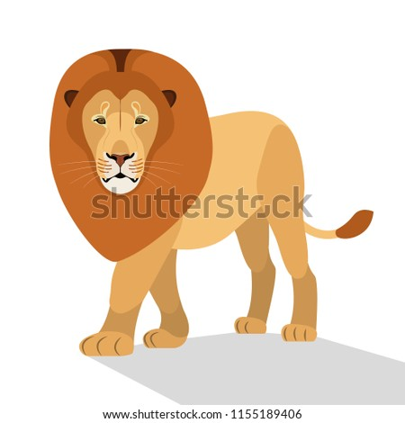 Big lion isolated on white, the king of beasts, a predator, an African beast, a zoo resident, a big and strong cat. Flat design. Vector illustration. EPS10