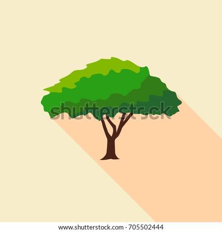 Big savanna tree icon. Flat illustration of big savanna tree vector icon for web