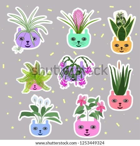 big set home plant stickers. Flat design. Vector illustration.