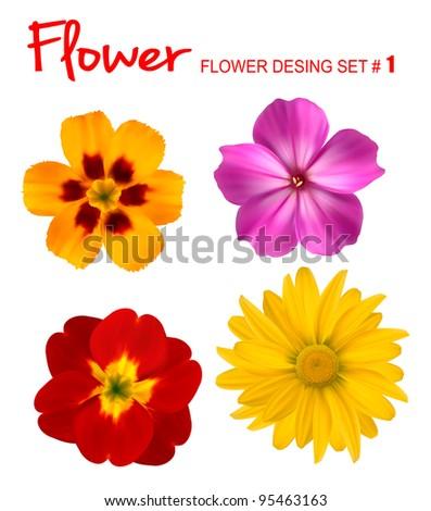 Big set of beautiful colorful flowers. Design flower set 1. Vector illustration.
