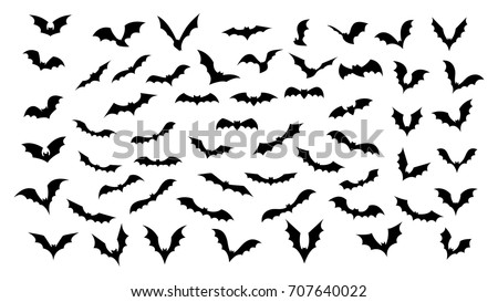 stock-vector-big-set-of-black-silhouettes-of-bats-vector