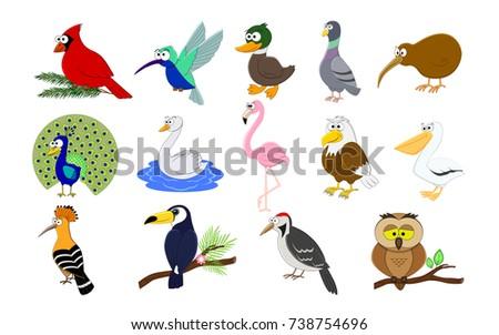 big set of cartoon  birds