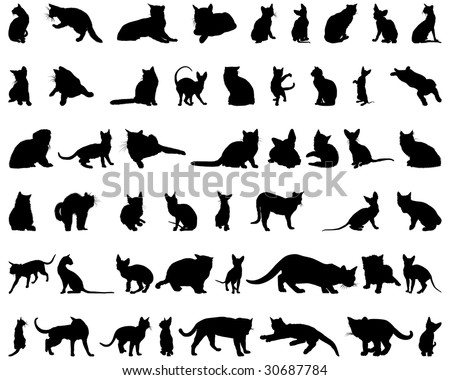 Big Set of Cats Silhouettes in Different Poses. Almost Each Kind of Cat Animal Represented in Set. High Detail, Very Smooth. Vector Illustration.