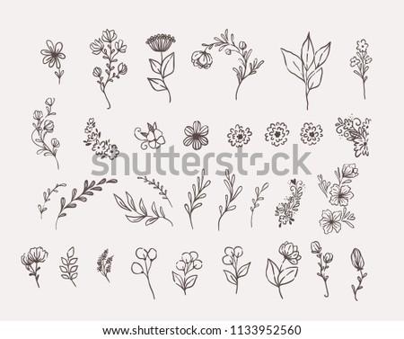Big set of floral design elements #1133952560