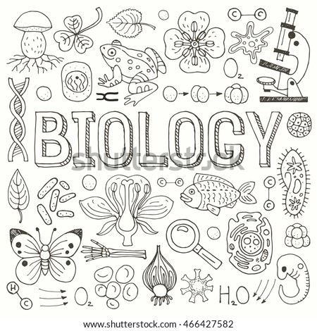 Big set of hand drawn vector biological icons, isolated on white background. #466427582