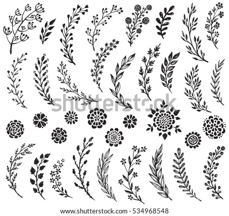 Big Set Of Hand Drawn Vector Flowers And Branches With Leaves Berries Floral Sketch
