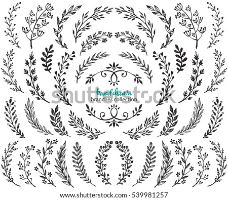 Big set of hand drawn vector flowers and branches with leaves, flowers, berries. Floral sketch collection. Decorative elements for design. Ink, vintage, rustic.